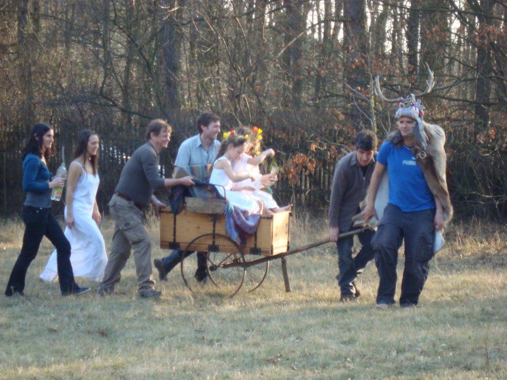 Feier im Zauberwald